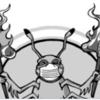 Burning Beetle