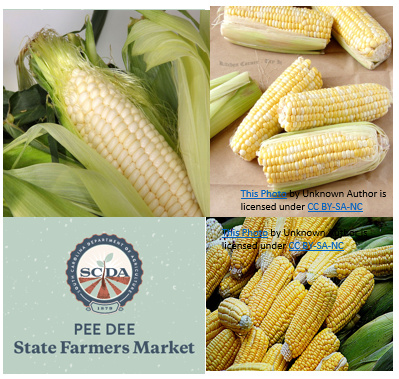 Preserving Sweet Corn:  Summer Demonstration Series and Free Canner Testing at the Pee Dee State Farmers Market