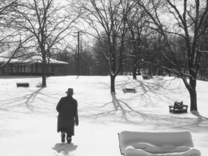 Losing Winter Exhibition Opening