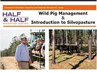 Half and Half Webinar Series: Wild Pig Management & Introduction to Silvopasture