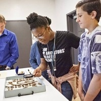 Students looking at artifacts on display