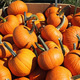 Take & Make: Pumpkin Spice Sugar Scrub