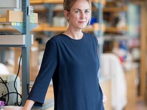 BME Seminar: Katharina Ribbeck