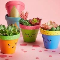 Smith Hall | Make Your Own Succulent