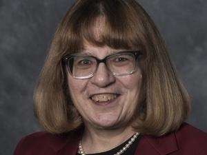 MEMS Graduate Seminar Series - Invited Lecturer - Dr. Susan Lessner