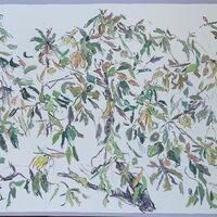 Avocado Tree (Yellow Harmony), 2021, oil on canvas, 36 x 60 inches