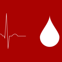 Lions for Christ Community Blood Drive