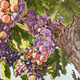 Playhouse Art Space: Fashion, Flowers, Fruit & Fantasy