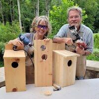 How To Build A Screech Owl Box