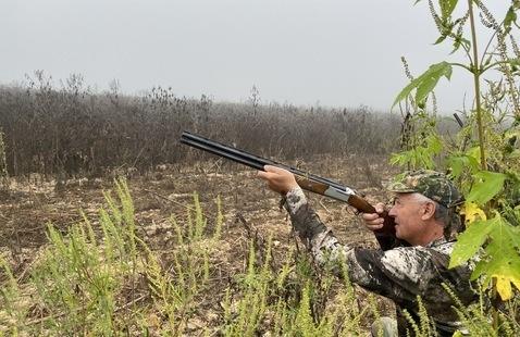 hunter sighting prey
