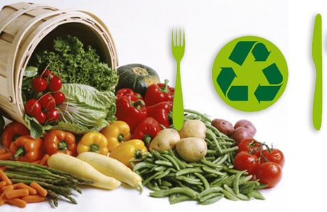 Sustainable Food and Diet 101 webinar