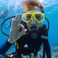 Diver underwater - scientific diving