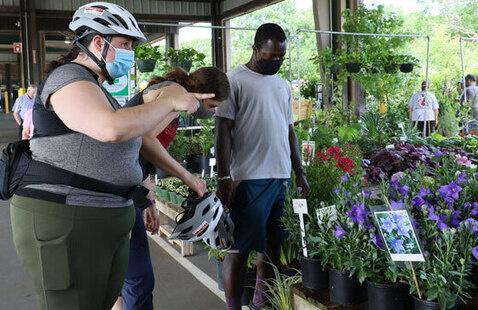 Biking to the NC State Farmer's Market