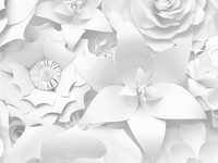 an image of white paper flowers