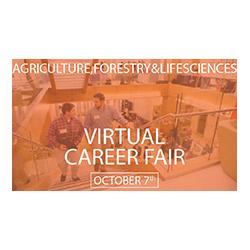 CAFLS Virtual Career Fair