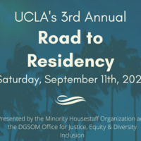 3rd Annual Road to Residency
