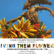 Solo Exhibition: Giving Them Flowers