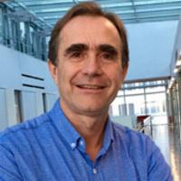 ES-DRC WIP: Jorge Ferrer, PhD: Non Coding Genome Defects and Diabetes Mellitus