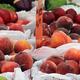 Casey Farmers Market