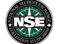 NSE Virtual Fair - LGBTQ+ Students