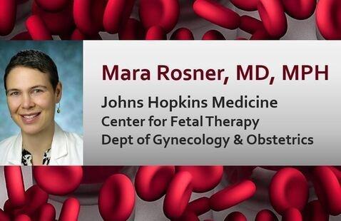 Mara Rosner, MD, MPH, Johns Hopkins Medicine, Center for Fetal Therapy