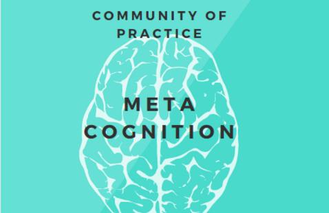 Community of Practice: Metacognition