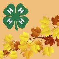 4-H Fall Volunteers