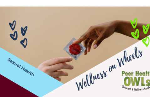 Wellness on Wheels: The Birds and the BAES