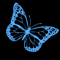 Blue graphic butterfly on a black background