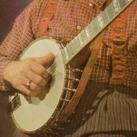 person playing a banjo