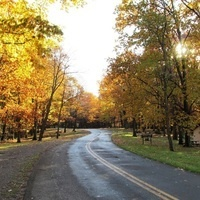 Painting in the Outdoors: Fall Foliage