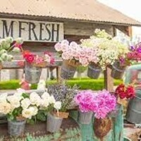 Panhellenic + Brownings Farm & Flower Truck Pass Out