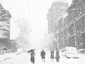 "Unlocking the Exhibition: Creating ""Losing Winter"""