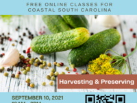 Edible Garden Series: Harvesting and Preservation