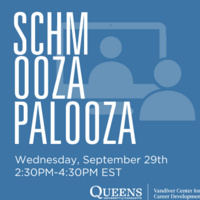 Schmoozapalooza:  A Professional Networking Event