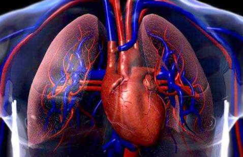 The Bottom Line with Joe and Bob: Cardiovascular Webinar Series