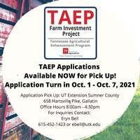 TAEP Applications Available