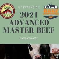 2021 Advanced Master Beef