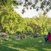 Virginia House Gardens
