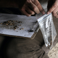 Hand pulling out specimens from a bag  onto a clipboard