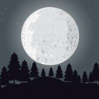 Moonlight Walk around Shawnee Lake