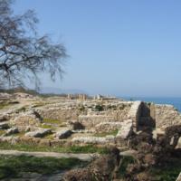 """Carthage: A Subaltern Empire"""