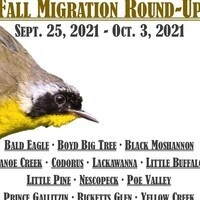 2021 Fall Migration Round-Up