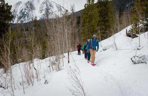 Snow Shoe Day Hike
