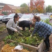 Workshop: Cool Weather Gardening