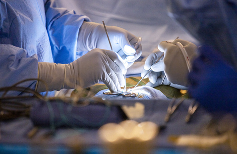 UCSF Neurosurgery: Virtual Education Day