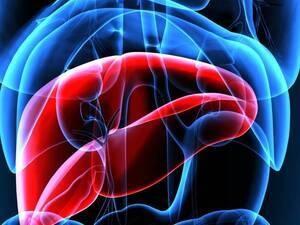 Transplant Hepatology Journal Club