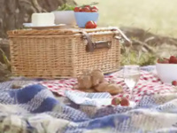 Picnic and Clean Up