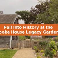 Fall into History