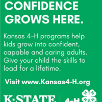 4-H Confidence Grows Here
